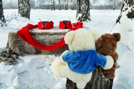 forest tea: Two teddy bears rest in winter forest with cup of tea