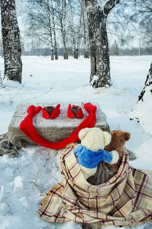 Two teddy bears rest in winter forest with cup of tea