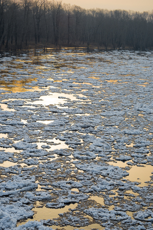 drifting ice: Ice drifting on the river at sunset