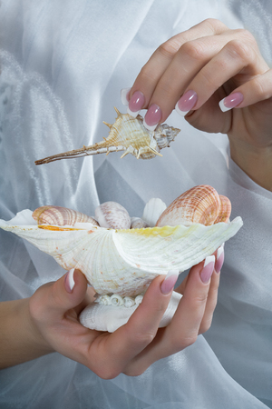 manicured hands: Beautiful healthy young womans manicured hands with shell