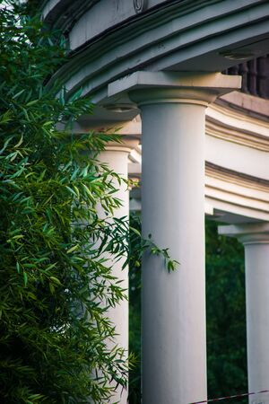 roman columns: House with Roman columns and trees, summer view