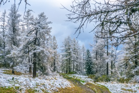sleet: View of first snow on mountain pass Stock Photo