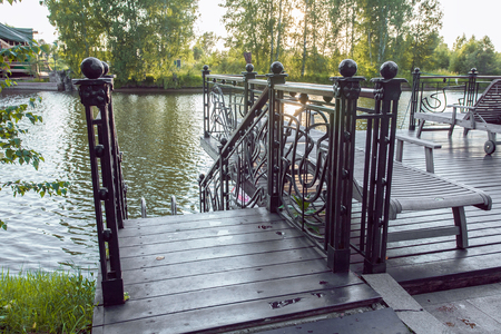 details of metal forged fence