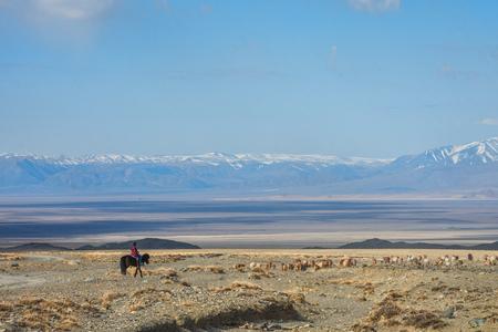 Girl shepherding herd of sheep in prairie 版權商用圖片 - 87110271