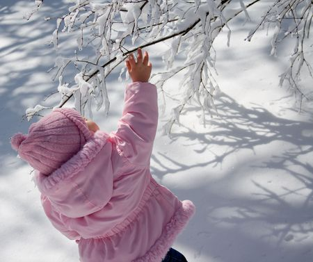 Young girl dressed in pink hat and coat outside in the snow.  Reaching up to a snow covered branch. Stock Photo