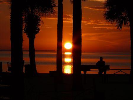 A man watching a beautiful Gulf sunset in Florida. photo