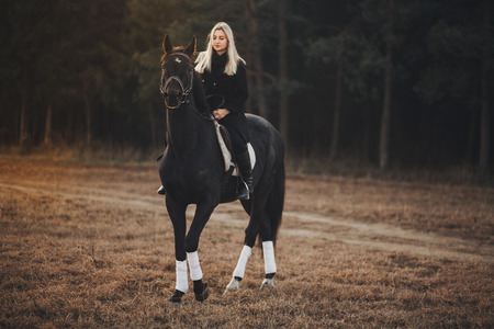 Girl with horse girl with horse girl with horse girl with horse Banque d'images - 39392364