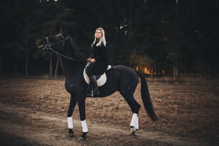 ponies: girl with horse girl with horse girl with horse girl with horse Stock Photo