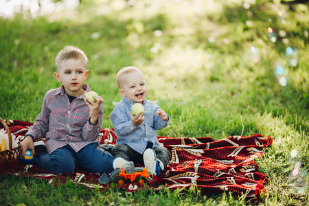 Two little brothers sitting and eating apple in park. 写真素材