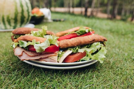 Close-up big plate with appetizing fresh sandwich on green grass