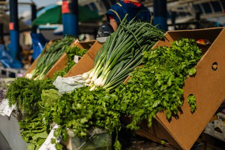 A lot of fresh greens, vegetables in a cardboard box at the market 版權商用圖片 - 150254674