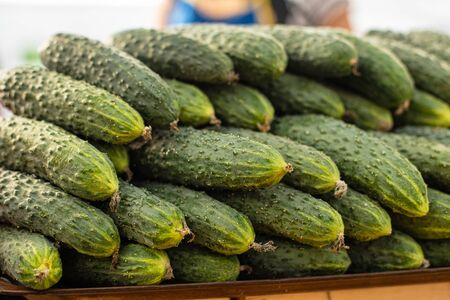 Picture with a lot of green cucumbers lie on top of each other in the shape of a pyramid in the market