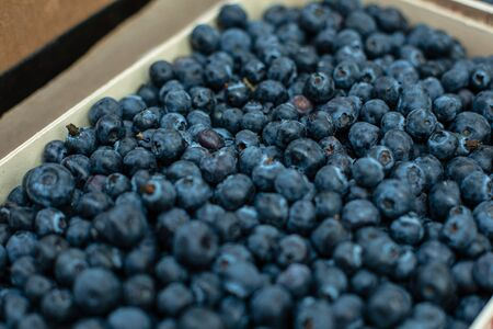 Top view of ripe and juicy fresh picked blueberries lying in the boxes and ready for sale. Fresh fruits concept 版權商用圖片
