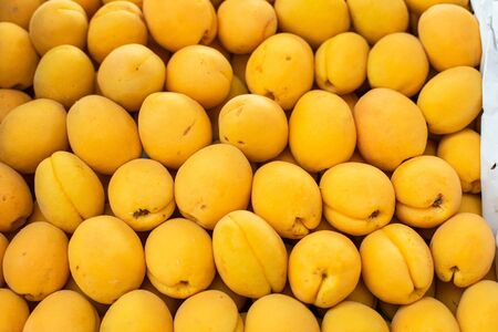 Beautiful picture with a lot of big, fresh, yellow apricot sold on the market