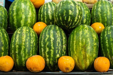 Close up of group of fresh green watermelons and yellow sweet melons ready for sale in organic farm. Fresh fruits concept 版權商用圖片