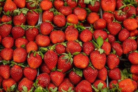 Close up of delicious fresh red strawberries for sale at a fruit stall. Ripe strawberries background