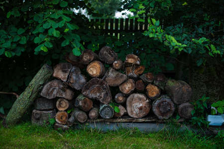 Lots of wood and logs in the backyard of a house