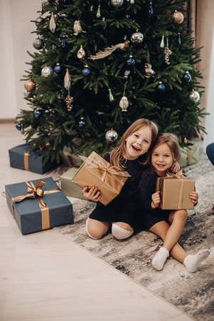 two pretty sisters rejoices together inder a christmas tree 스톡 콘텐츠