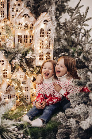 sister poses for the camera in a beautiful christmas decoration and rejoices together