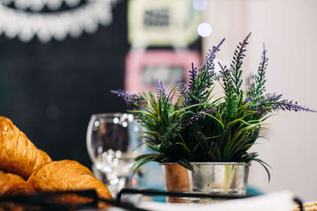 Lavender in pot and croissants.