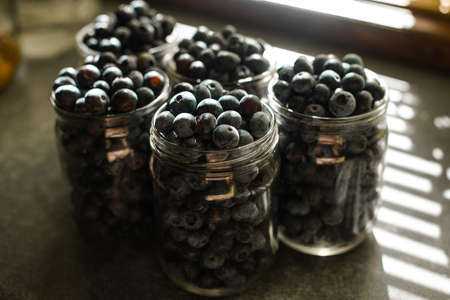 Blueberries in glass jars for conservation.