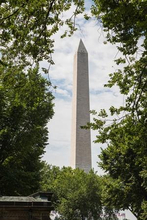 obelisk stone: Washington monument on the mall in Washington DC framed by trees