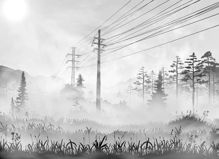 Power line in countryside. Vector realisic illustration of rural area with transmission line passing through the grass field, wood and forest. Black and white sunny morning with fog picture
