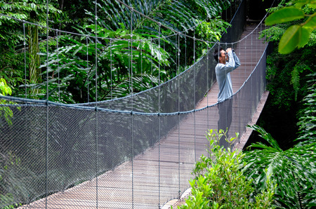 Bird watching in the jungle. One male bird watcher with binoculars stands on a wooden bridge.