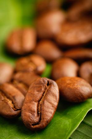 Fair trade organic coffee beans on a green leaf. Zdjęcie Seryjne