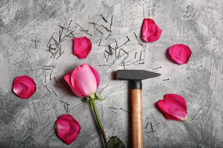 a hammer beats a rose, domestic violence, a man's rudeness towards a woman, protractedness attracts, nails and rose petals top view Standard-Bild