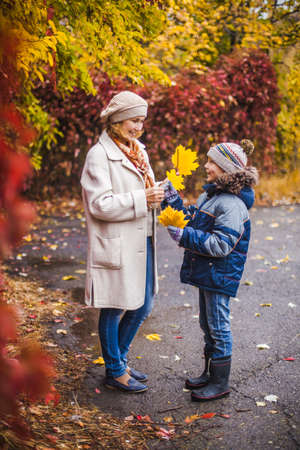 Warmly dressed mother and son in the Park after rain in autumn with yellow leaves in their hands