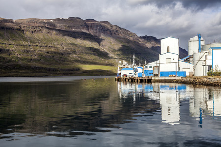 Plant fishery Seydisfjordur with kayaker on the water Stock Photo