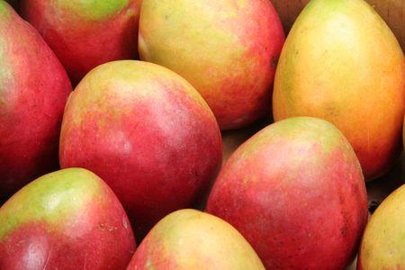 green mango: mango