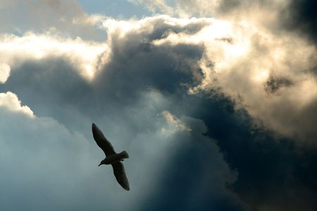 rays and clouds, concept of freedom Stock Photo - 633425