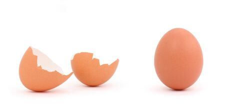 갈색 계란 총을 닫습니다.