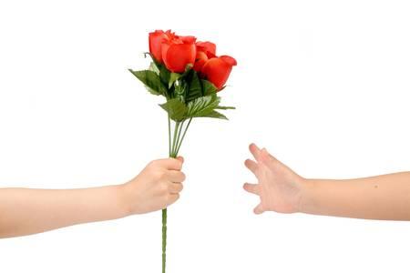 handover: handover red rose, love concept