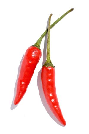 red chili with white background