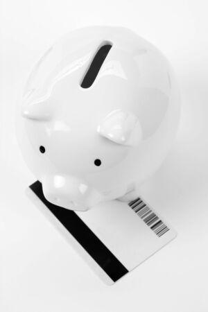 Piggy Bank and Credit Card close up Stock Photo - 3358960