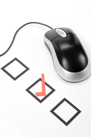 voting: questionnaire and computer mouse, concept of online voting