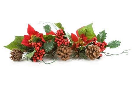 Christmas Decoration, Poinsettia, Pinecone, Holly Stock Photo - 3990149