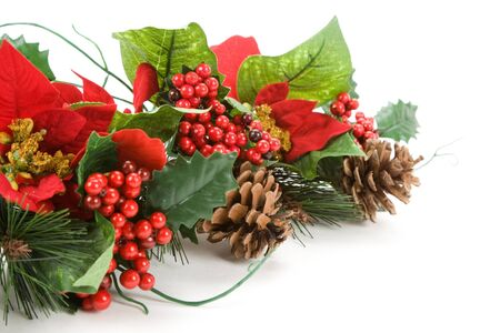 Christmas Decoration, Poinsettia, Pinecone, Holly Stock Photo - 4020604