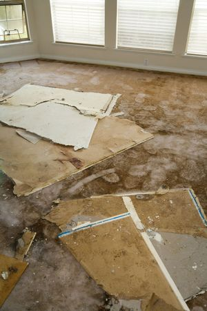 carpet: Home Interior Water leaking damaged plasterboard and carpet