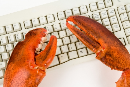 criminal activity: Lobster Claw and Computer Keyboard, concept of Internet, computer Criminal Activity