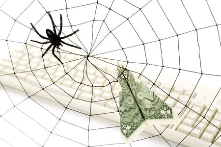 Spider Web and dollar, online business concept, risk, safety Stock Photo