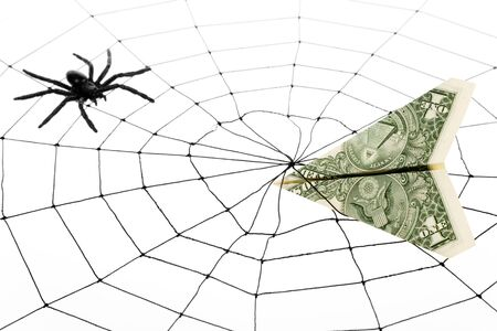 Spider Web and dollar, business concept Stock Photo