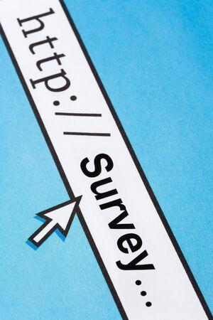 Computer Screen, concept of online survey Stock Photo - 5650870