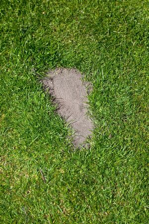 Grass and footprint, concept of environmental damage