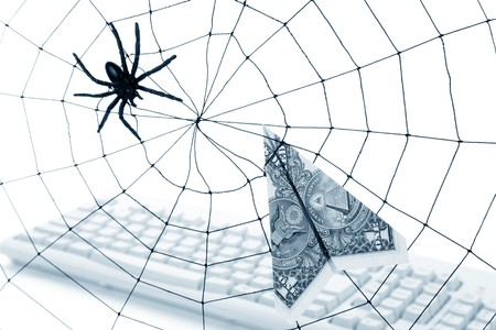 Spider Web and dollar, online business concept, risk, safety photo