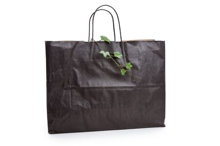 Black paper shopping bag and plant with white background Banco de Imagens