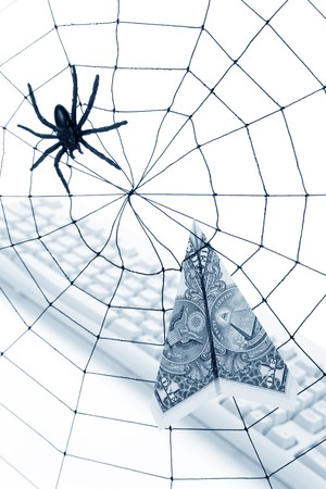 Spider Web and dollar, online business concept, risk, safety Stock Photo - 7712020